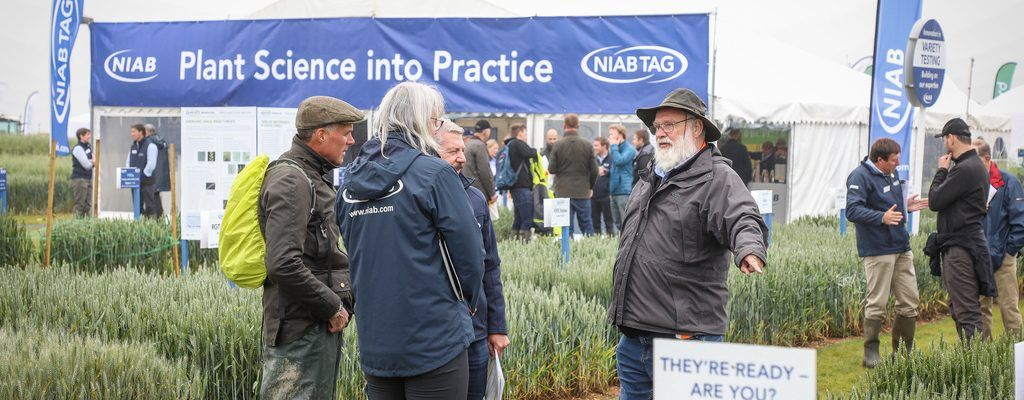 New date for Cereals 2021 to allow more visitors