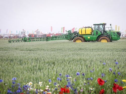 Cereals offers early bird tickets for free