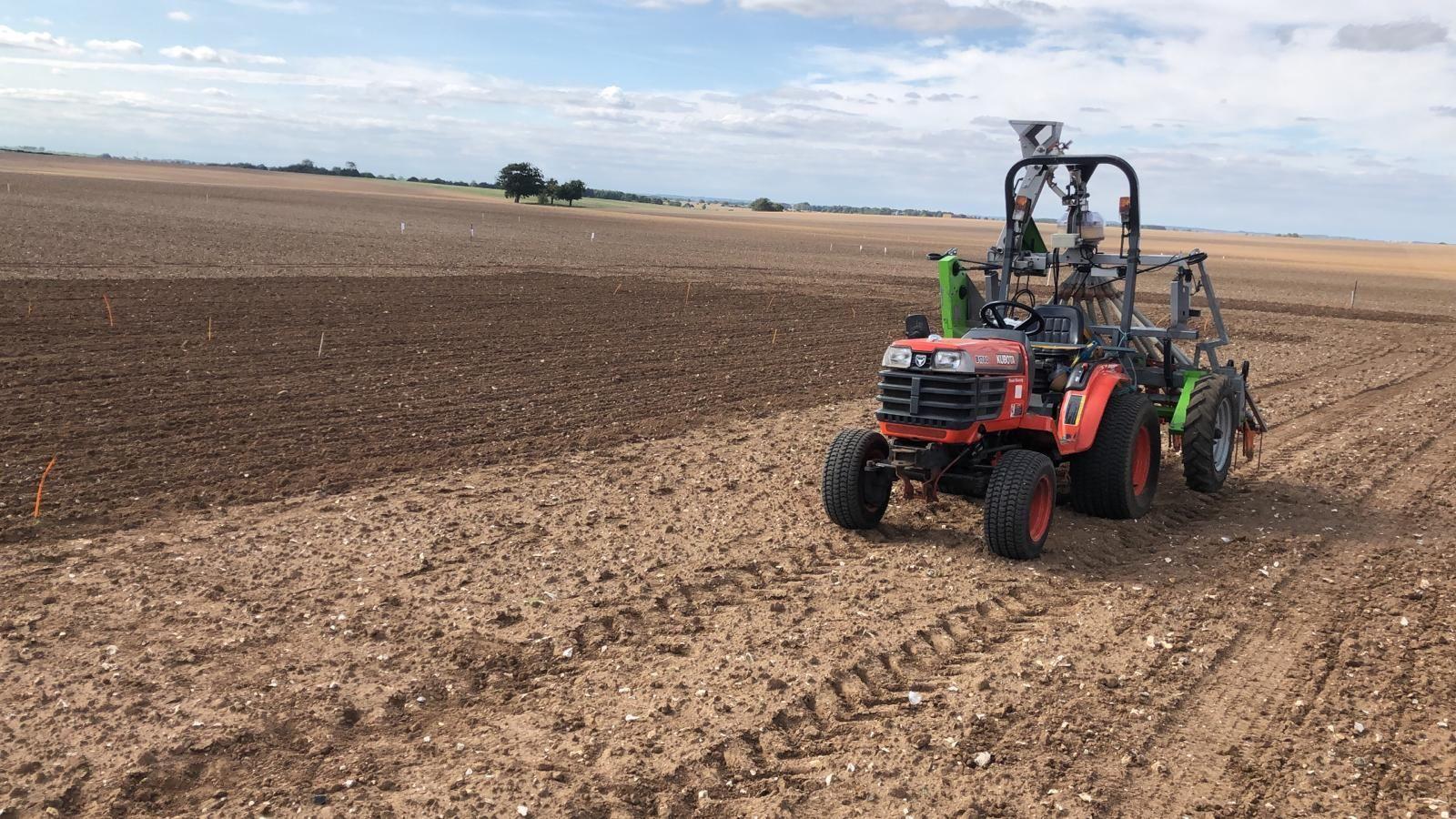 Cereals 2020 crop plots growing up and away