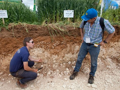 Make your soil pay with Cereals