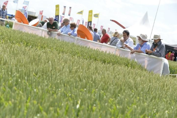 Cereals 2020 offers sustainable solutions