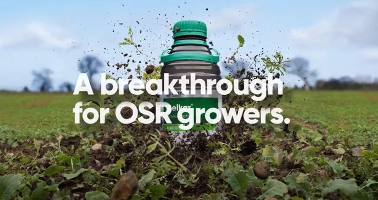 Reduce and manage some of the risks associated with OSR establishment