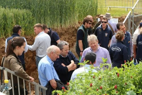 The Soil Pit at Cereals