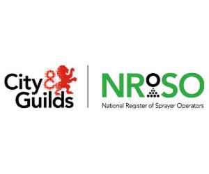 City & Guilds NRoSO