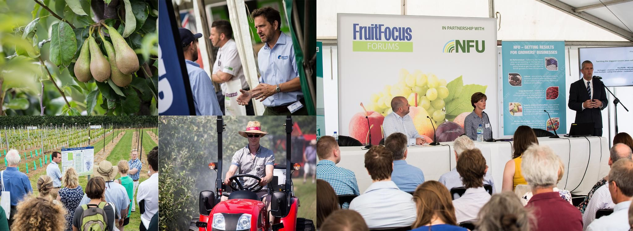 Fruit Focus 2021 <br> Returns to Kent Bringing you the Leading Technical Event for the Fruit Industry