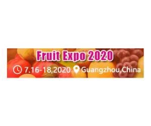 Fruit Expo