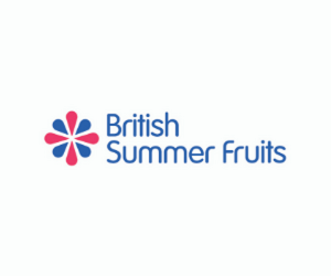 British Summer Fruits