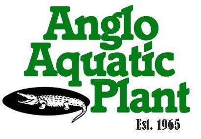 Anglo Aquatic