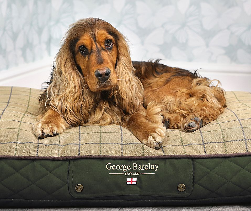 Country Dog Bedding Collection