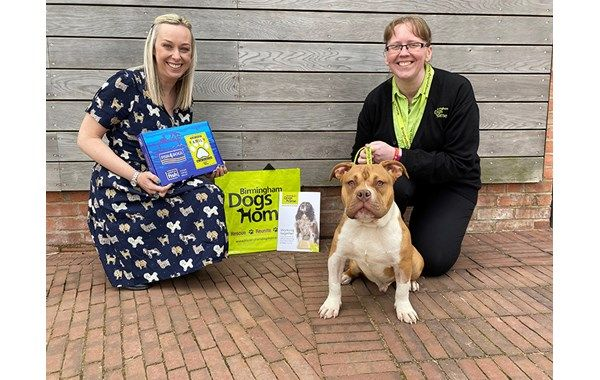 Fish4Pets Launches 'Re-Start' Programme with Birmingham Dogs Home