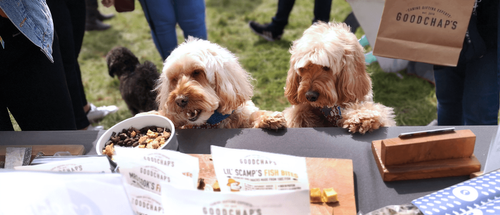Goodchap's at Dogstival