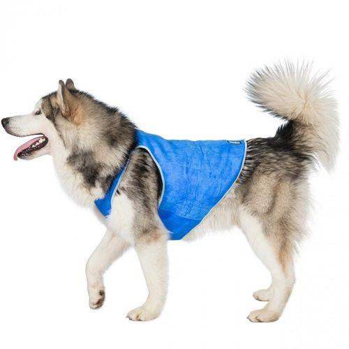 Introducing Trespaws Dog Cooling Vest