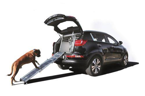 4pets EasySteps telescopic dog ramp
