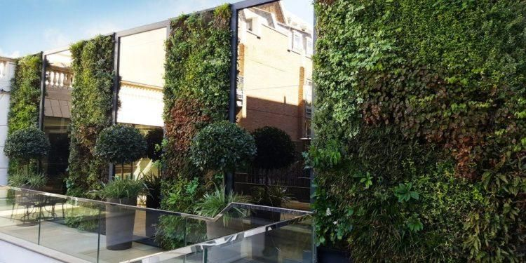 Green Gamechanger: How Plants are Transforming Buildings into Thriving Vertical Forests