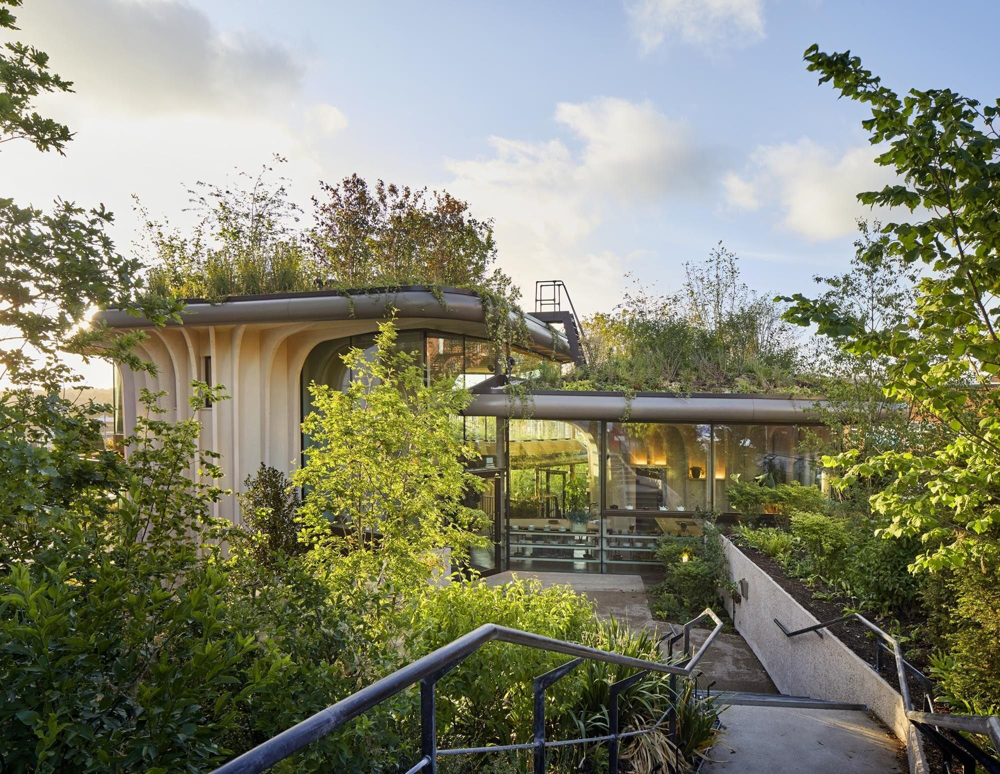 Breaching timber fins support three overlapping rooftop gardens of new Maggie's Centre in Leeds