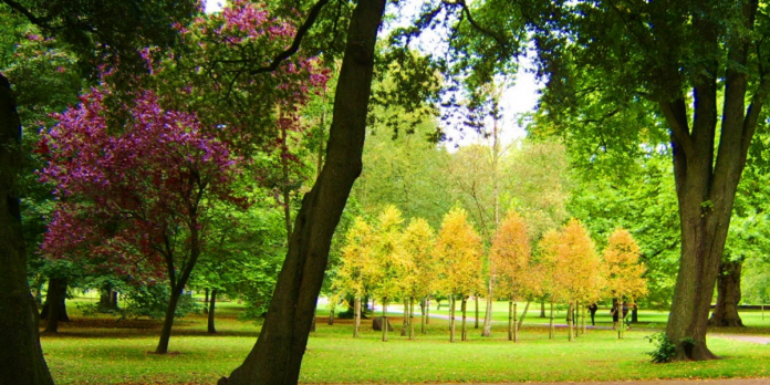 LI announces new plans to support parks and green space sector