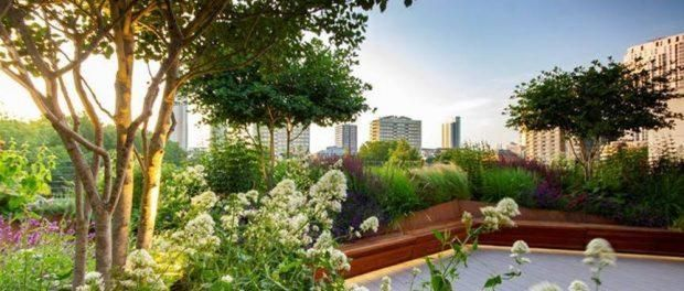 Another Green World: award-winning urban oasis nestled in Old Street development