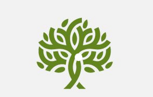 Domus Planters Limited