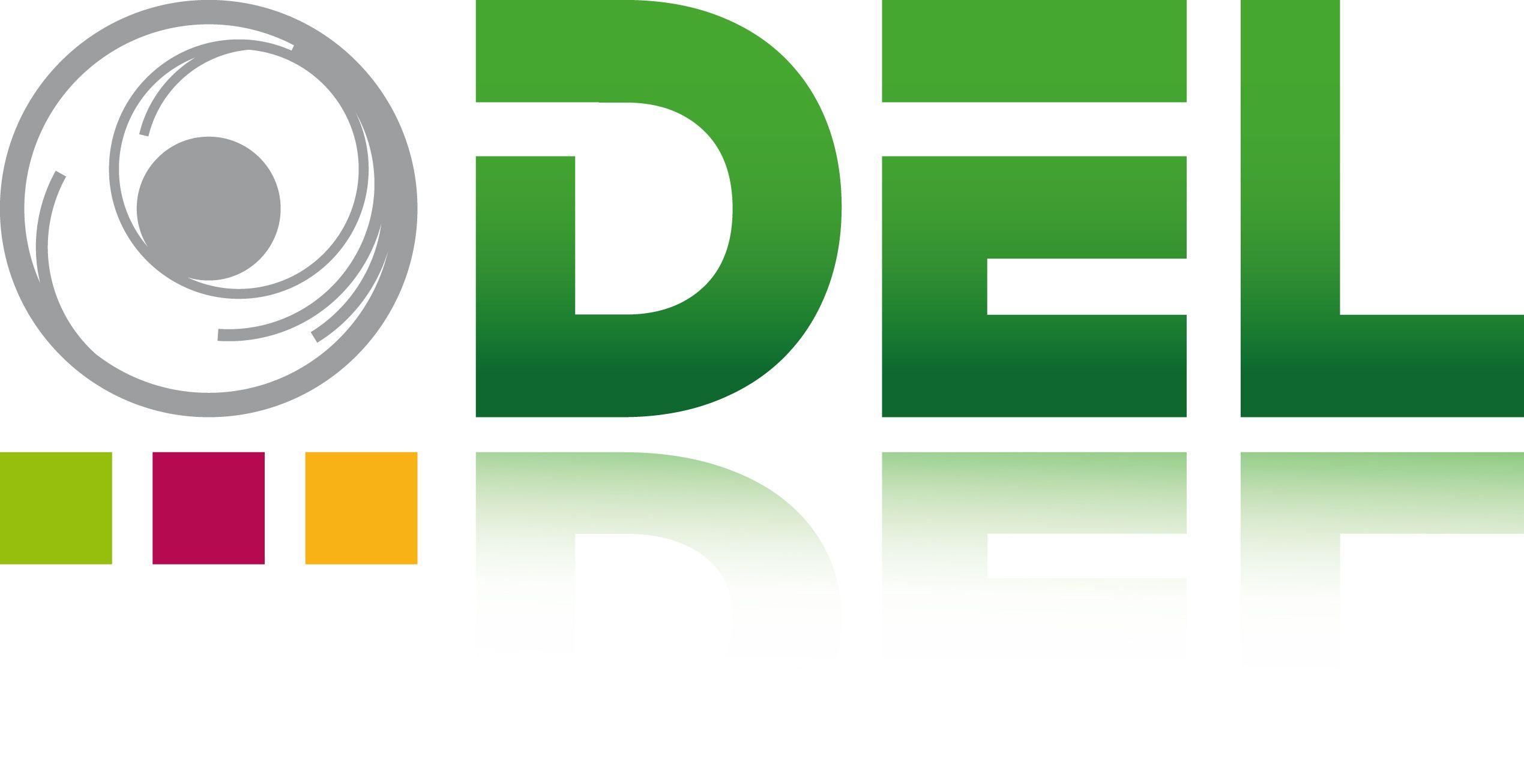 DEL - La Distribution Electronique