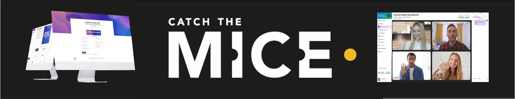 Catch the MICE