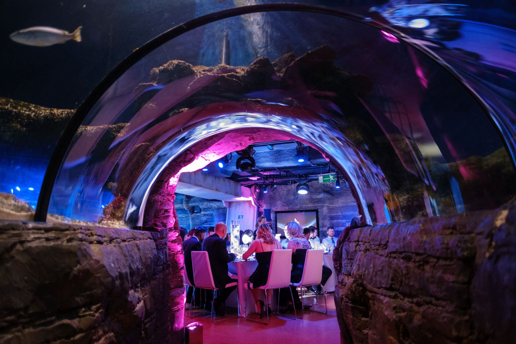 Merlin Event Venues - Our New World