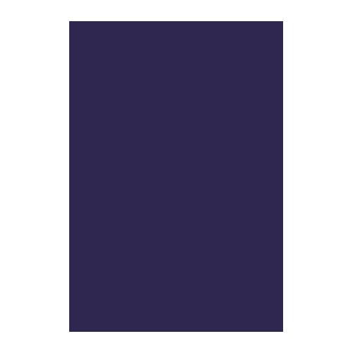 Wolf Eyewear