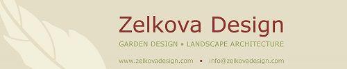 Zelkova Design