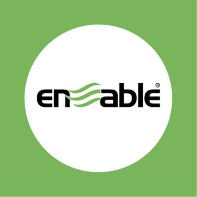 Enable International Ltd