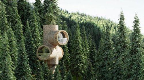Bert modular treehouse designed to look like cartoon characters   Construction Buzz #224