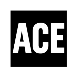 Accelerated Capability Environment (ACE)