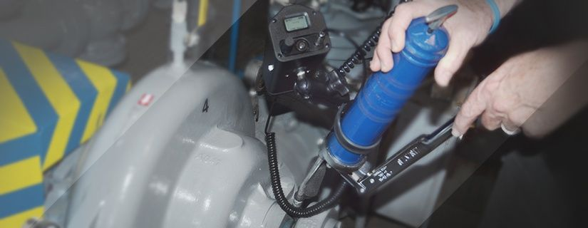 UE Systems Ultraprobe 401 Digital Grease Caddy Pro Overview