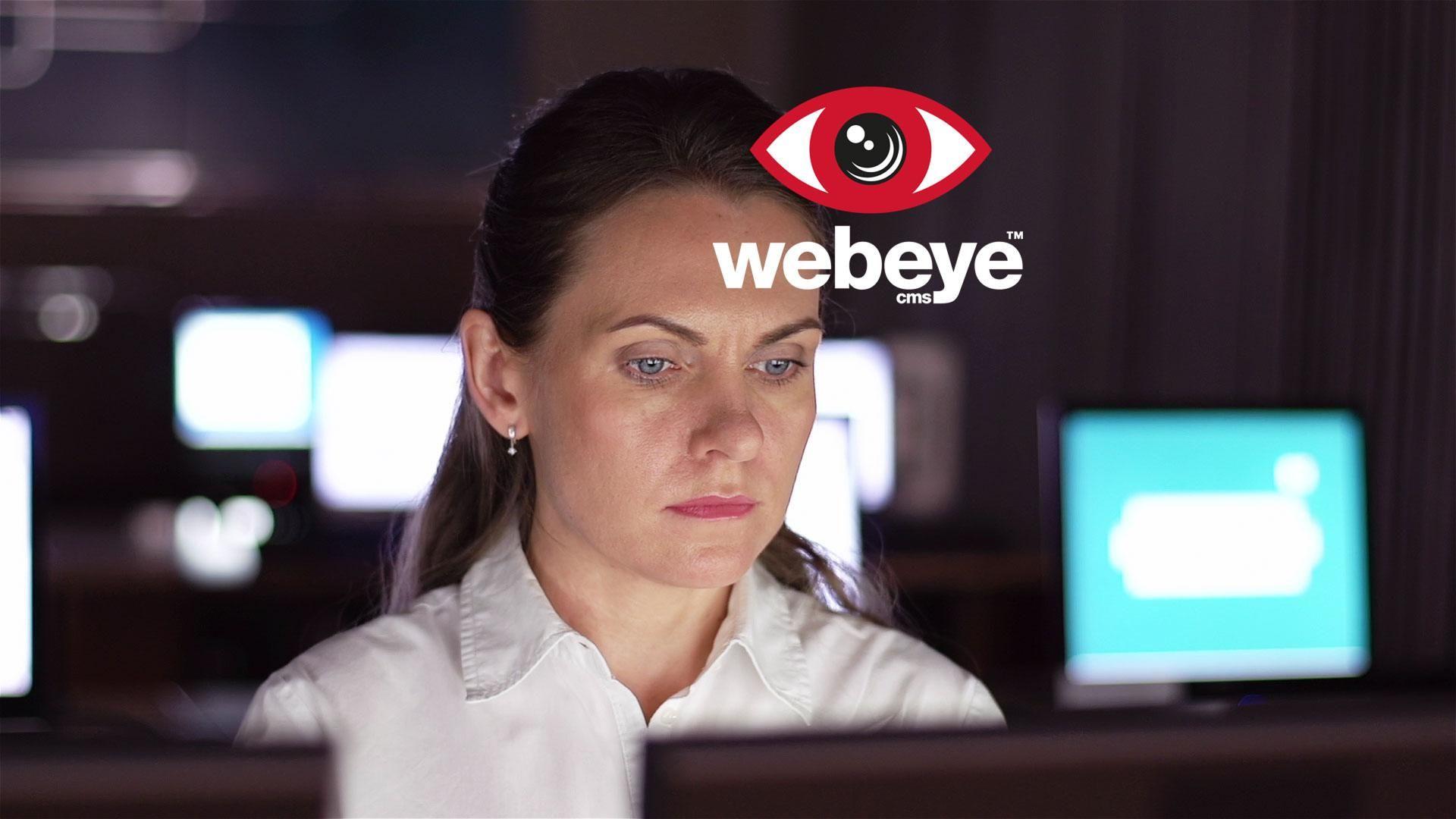 The Webeye concept