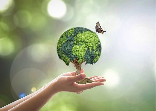Sustainability will be top of the agenda post-COVID-19