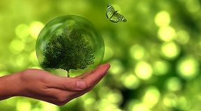Why sustainability needs to be part of the industry's comeback