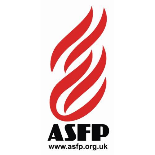 Senior Representative Association for Specialist Fire Protection