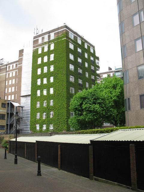 Government increases support for green buildings