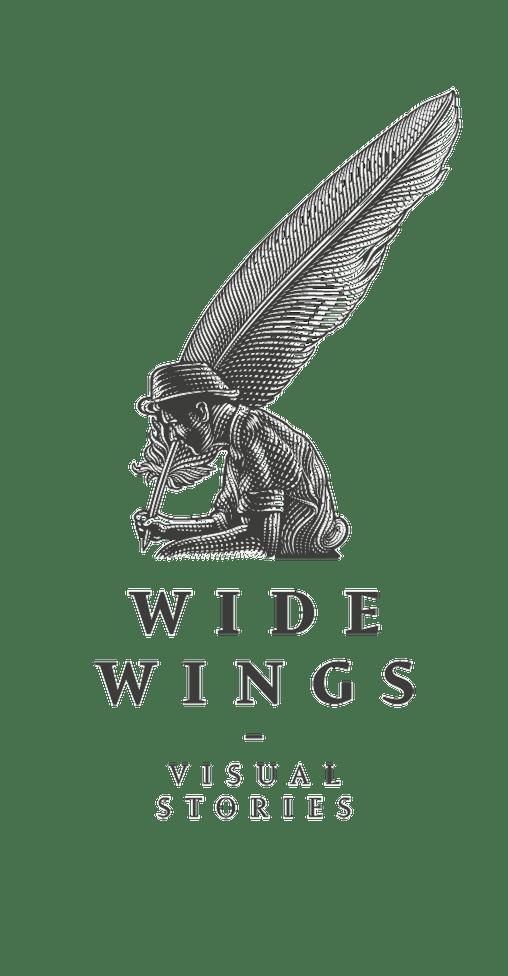 Wide wings studio