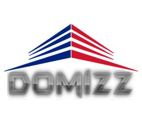 Domizz