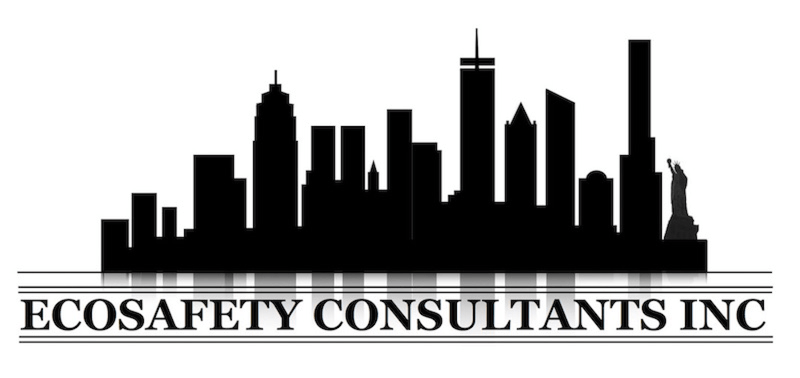 EcoSafety Consultants Inc