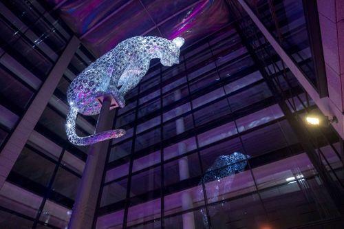 Anolis LED fixtures light the Aberdeen Leopard