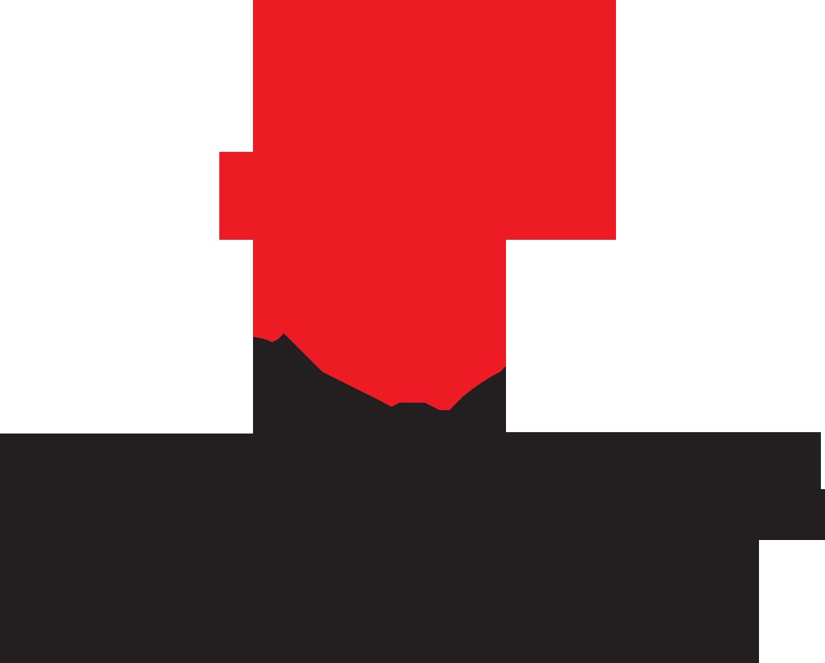 Particles Plus Inc.