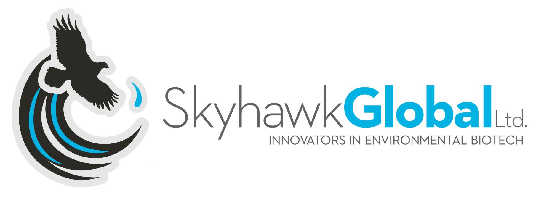 Skyhawk Global Ltd
