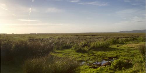 Innovative Natural Flood Management: A tour around the UK