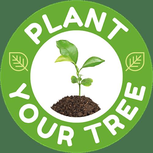 Plant a tree RWM forest
