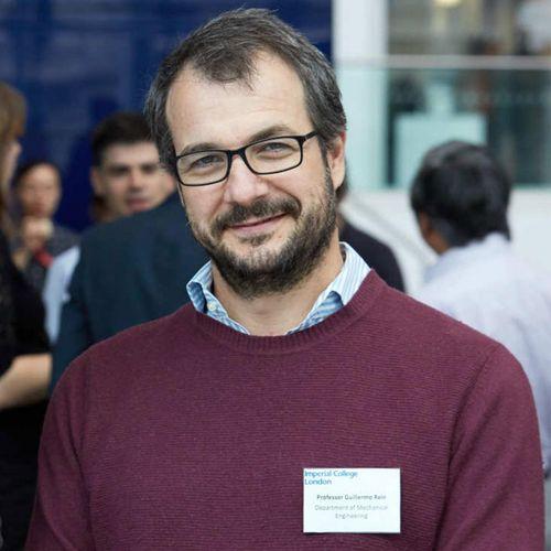 Guillermo Rein