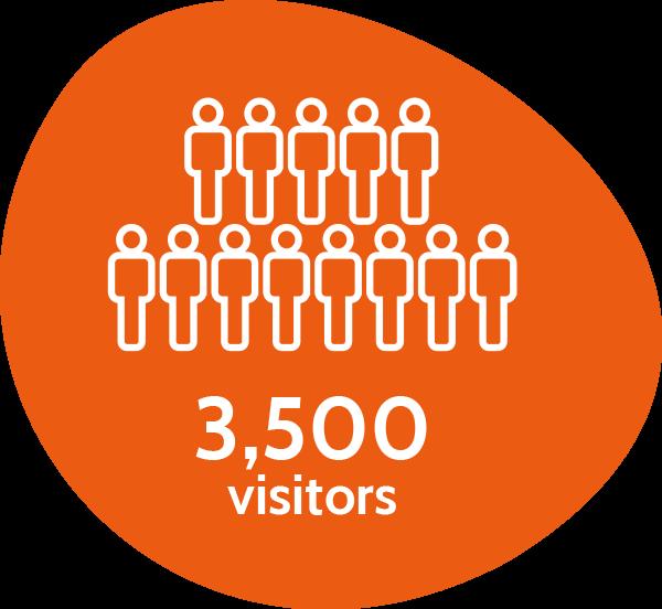 3,500 visitors