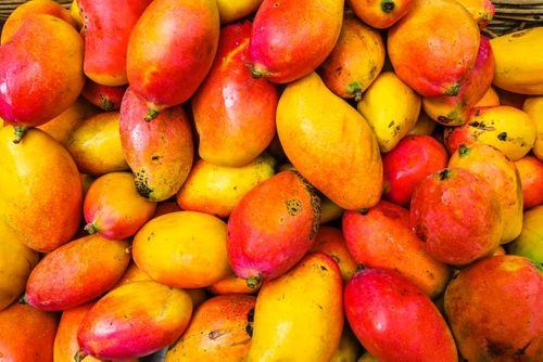 When life gives you mangoes, make a fruit leather bag?