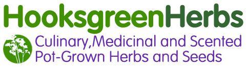 Hooksgreen Herbs