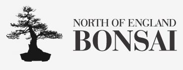 North of England Bonsai