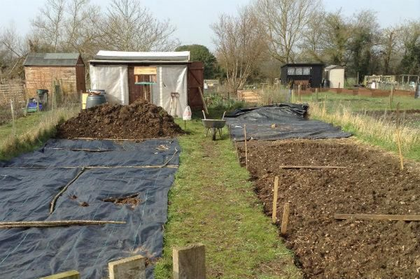 Allotments, take it slowly, bit by bit - top tip from Life at No.27's Annabelle Padwick